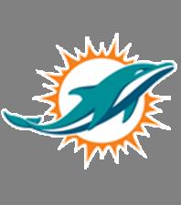 New Dolphin logo